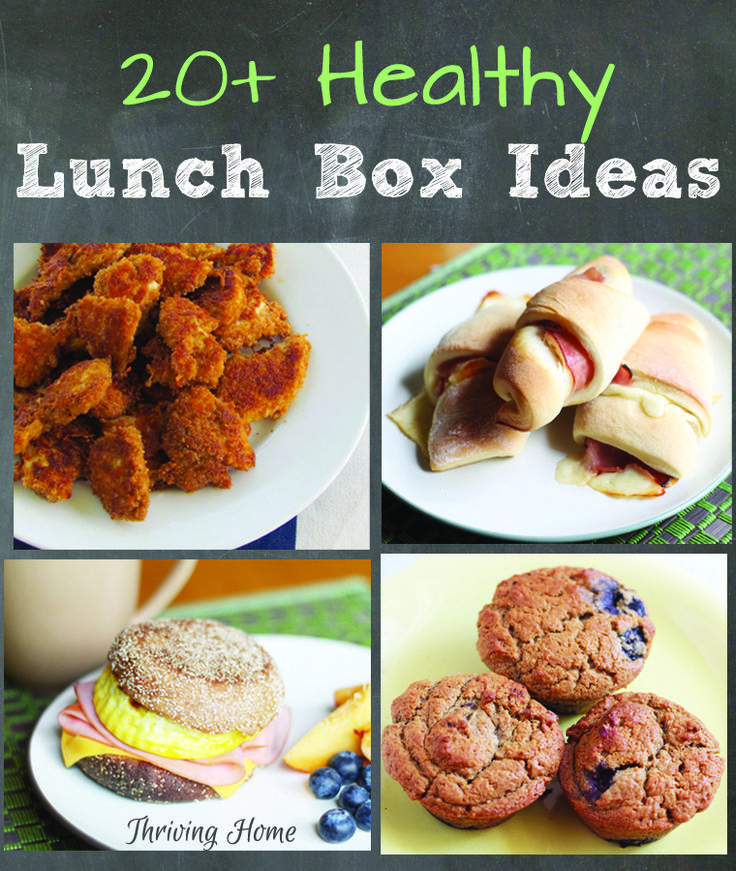 168 best lunch ideas images on pinterest cooking food toddler tried and true real food lunch ideas that wont disappoint plus tips for packing and sending hot food options forumfinder Choice Image