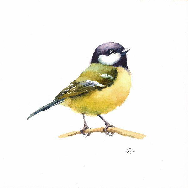 Watercolor Tit Bird Original Painting 7 4/5 x 7 от CMwatercolors