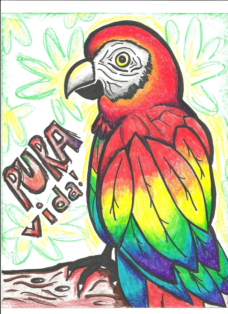 pura vida - COSTA RICA CAN'T WAIT!!!