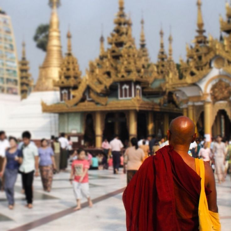 In Myanmar, there are lots and lots of Buddhist monks! This was taken at the Schwedagon Pagoda in Yangon. #travel #buddhist #monks #burma