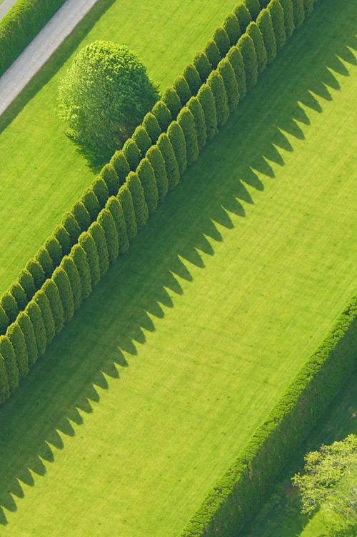 from the airVanities Fair, Hedges, Gardens Design Ideas, Modern Gardens Design, Green Gardens, Formal Gardens, Aerial Photography, Colors Green, Shadows Art