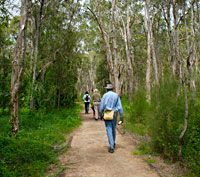 Guided nature walk in Boondall Wetlands Saturday, February 14, 2015, 9:30 – 11:30am COST: Free VENUE: Boondall Wetlands Environment Centre VENUE ADDRESS: 31 Paperbark Drive, Boondall AGE: This walk is suitable for ages 5+. All children must be accompanied by a supervising adult throughout the activity. NOTE:	 Participants must wear a broad-brimmed hat, sunscreen and insect repellent, enclosed walking shoes, sun-smart long-sleeves and long pants, and bring drinking water.