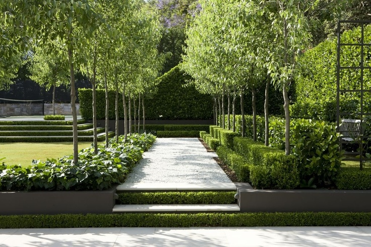 Layers of hedging.garden by #peterfudge