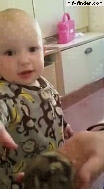 Baby tries to eat hamster