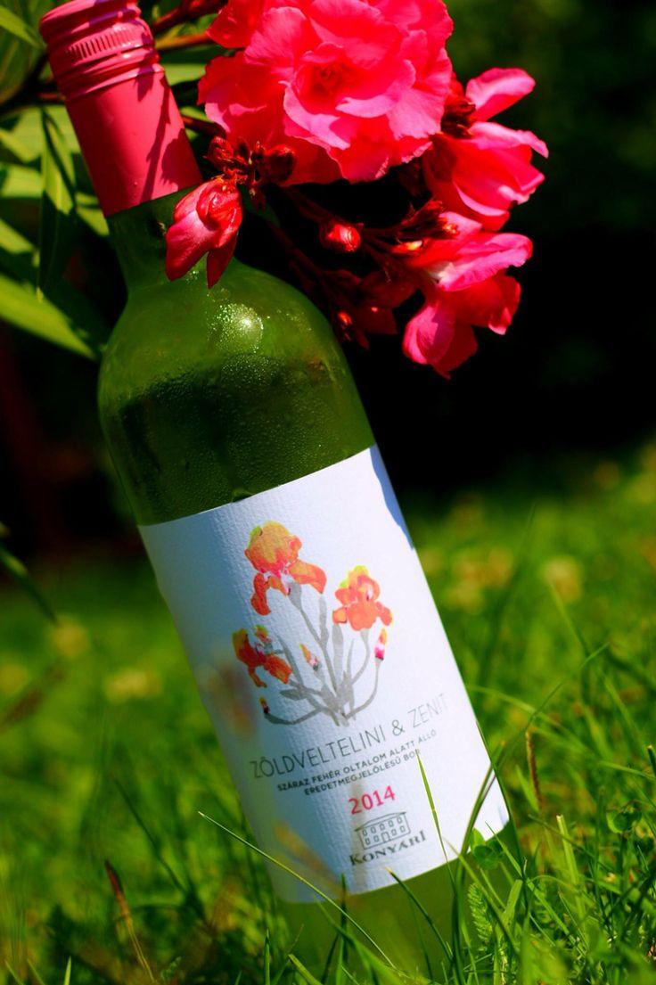 Konyàri Winery from Lake Balaton