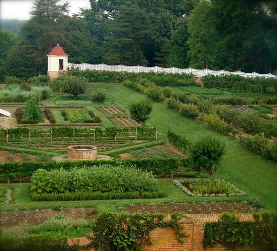 jennings gates notes from a virginia country house virginia country from a growing vegetablesvegetables