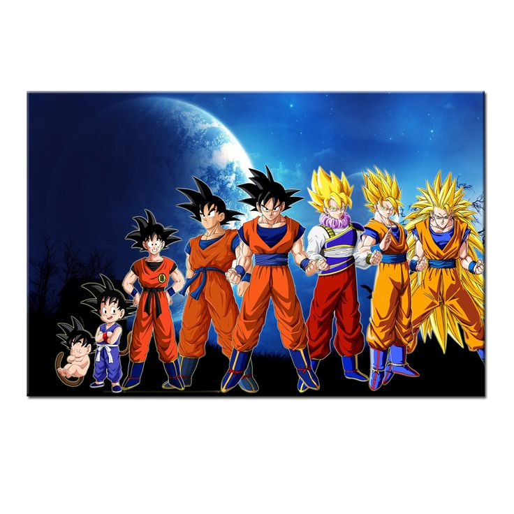 25 best ideas about dragonball evolution on pinterest for Dragon ball z living room