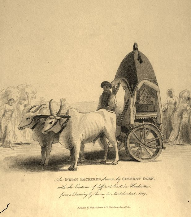 Take a look at the 1812 lithograph of Indian hackery! #Indian #hackery #1812 #ancient #transportation #heritage