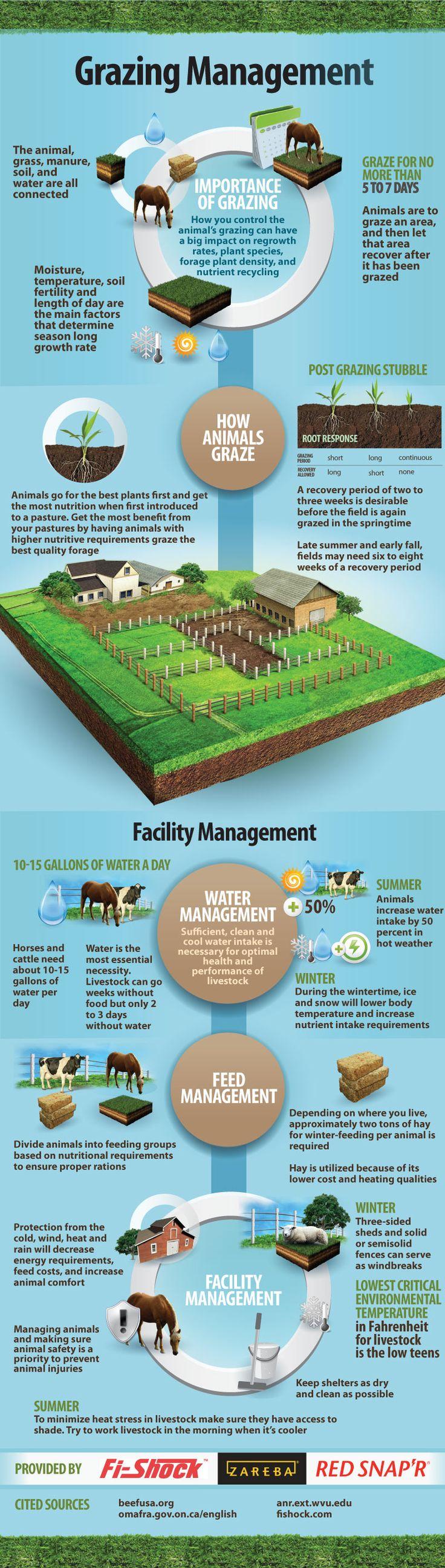 Grazing Management Infographic