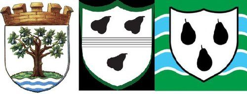 Crest, logo and flag - Worcestershire County Council, cricket team and county flag all bear pear tree symbols.
