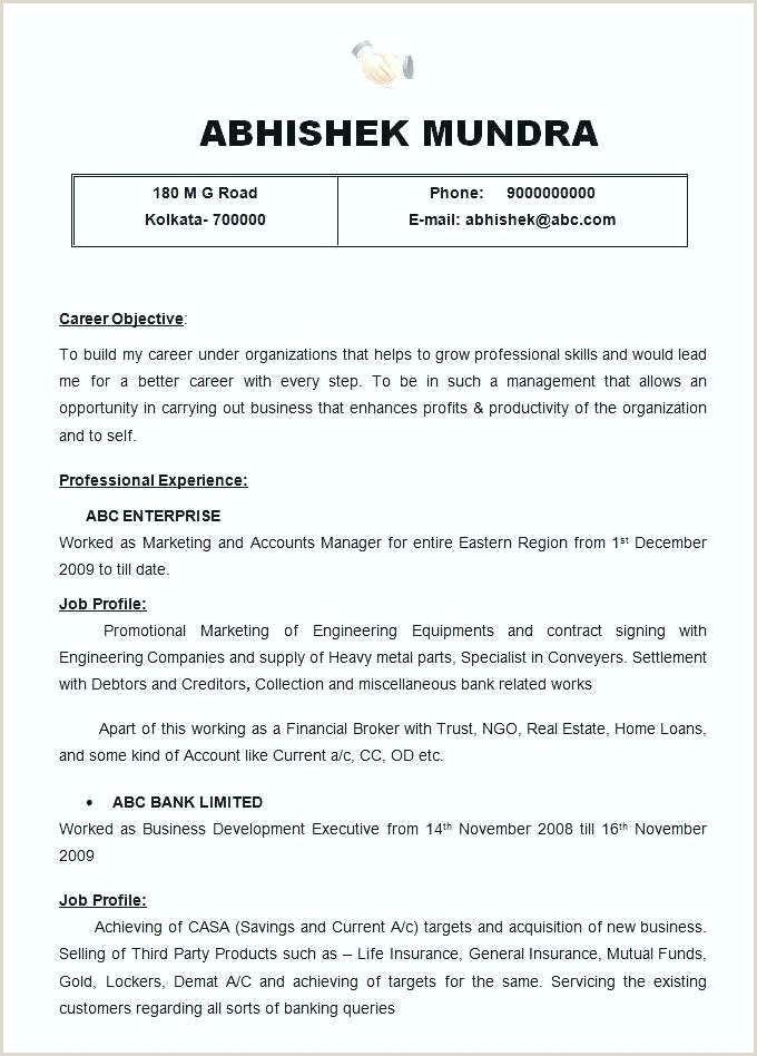Modern Cv Sample Doc Professional Resume Samples Best Resume