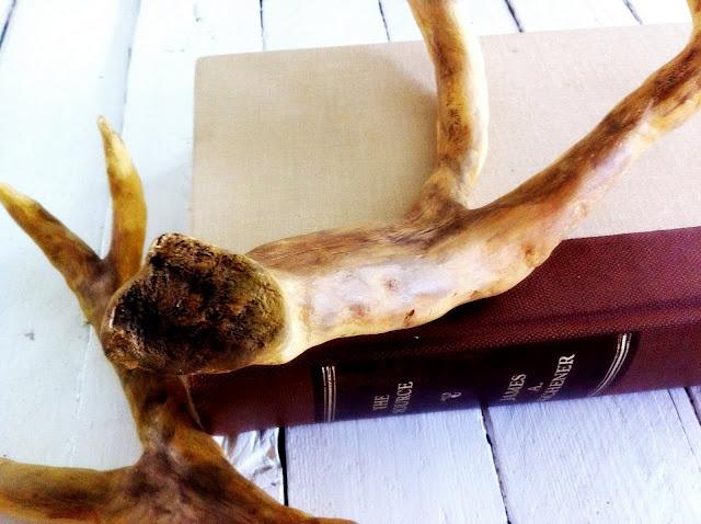17 best images about deer crafts on pinterest reindeer for Fake deer antlers for crafts