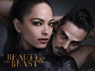 Beauty and the Beast TV Series (2012 - Present).  So far, I am loving this new take on the classic story.  Katherine as a devoted police officer caught between duty and helping Vincent is a great plot.