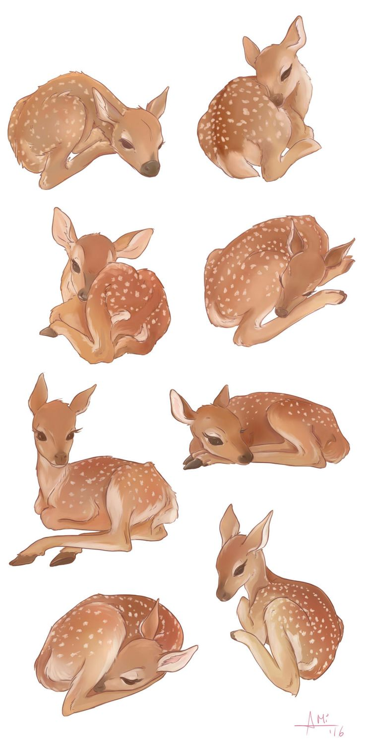 My little deers colored :) -Minzami- 2016