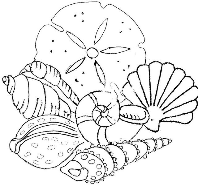 Seashells collage embroidery