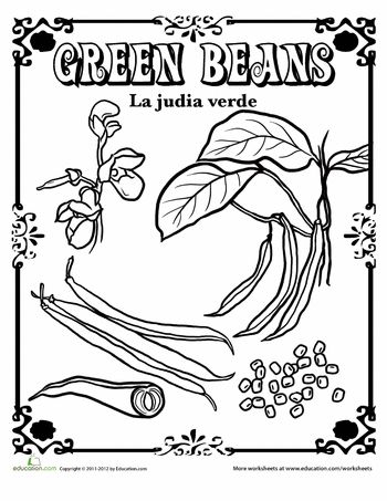 Worksheets: Green Beans in Spanish