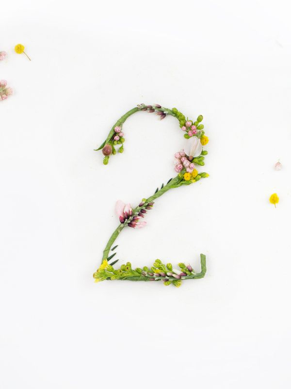 Blossom Type. A delicate alphabet made from natural flowers