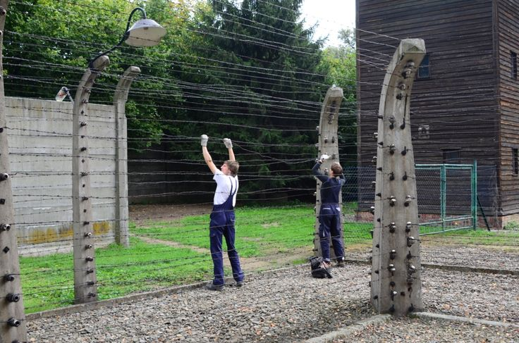 Conservators at work. The picture shows a stage of conservation of ceramic insulators on the fences of the former Auschwitz I camp. Damaged or cracked insulators must be conserved in the workshops. Here they are put back in their original position.
