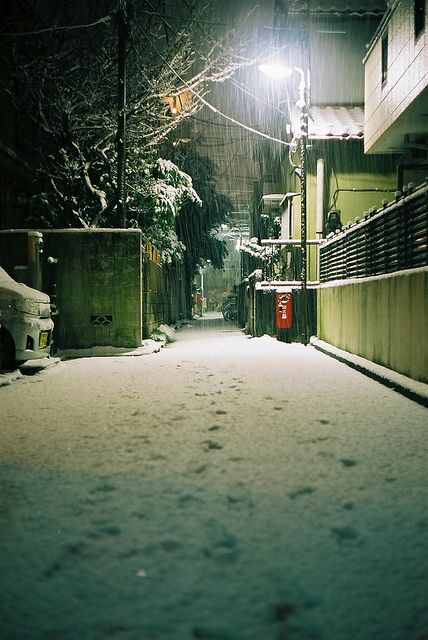 ✖✖✖ Snowy Tokyo / by Beta Photography ✖✖✖
