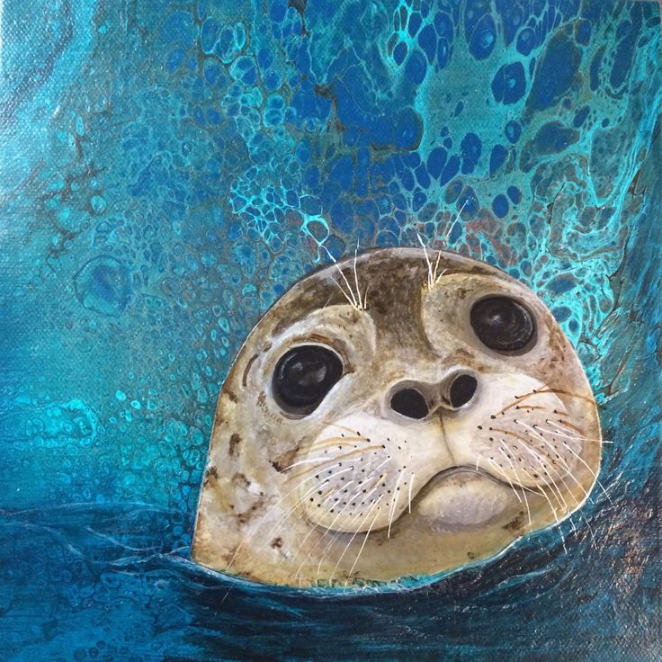 """Little Buddy"" This sweet little seal is painting in acrylics on 8 x 8 gallery wrapped canvas"