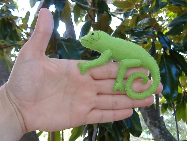Kind of thing that looks so easy but I bet mine would end up looking a piece of seaweed... Crawling Chameleon and Tranquil Turtle PDF Toy Pattern. $5.99, via Etsy.