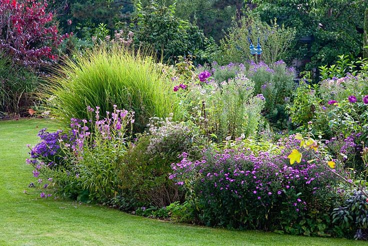 Perennial border with ornamental grass glass objects and for Ornamental grass border plants