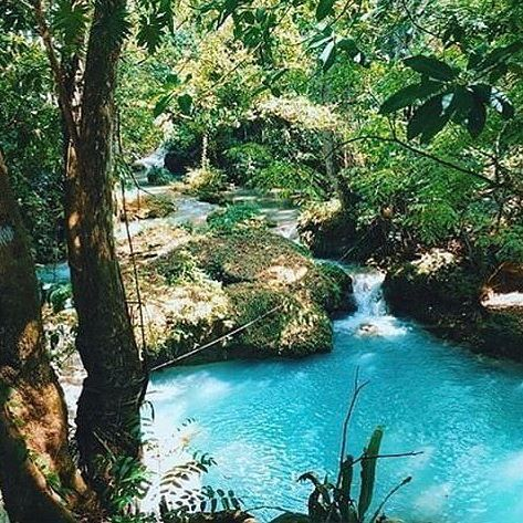 Peace can be found in the rain forest mountains above Ocho Rios. The Blue Hole has scenic tropical waterfalls with hazy blue swimming holes adding to beautiful surroundings #FeelTheVibeJamaica #VisitJamaica #HomeOfAllRight #Jamaica #BlueHoleJamaica
