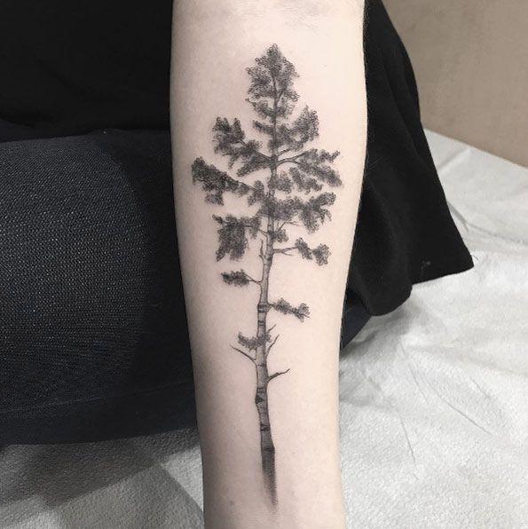 best 25 forearm tree tattoo ideas on pinterest. Black Bedroom Furniture Sets. Home Design Ideas