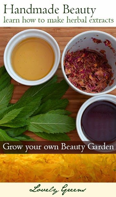 Handmade Beauty - Learn How to Make Herbal Extracts - Many skin caring plants…