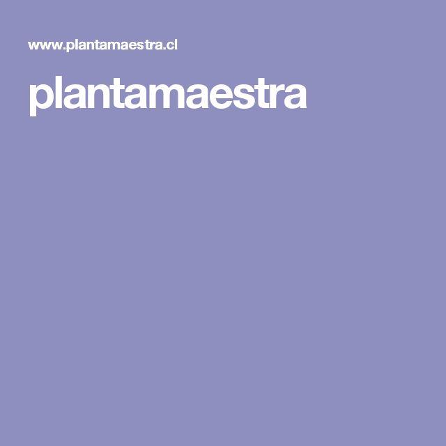 plantamaestra