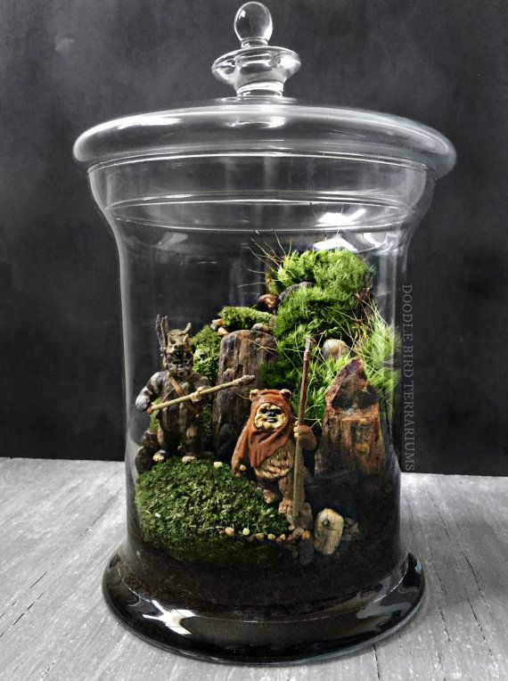A miniature Yoda or Ewok replica is housed in a wooded landscape made from live moss plants and petrified wood and marbled stone. Comes fully