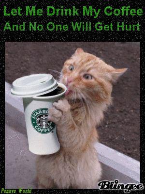 need coffee meme - Google Search