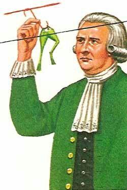 """During the 1780's, biologist Luigi Galvani performed experiments at the University of Bologna involving frogs. While cutting a frog's leg, Galvani's steel scalpel touched a brass hook that was holding the leg in  place. The leg twitched."" What are you trying to prove people?"