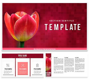 Tulip Bulbs for Sale Keynote templates