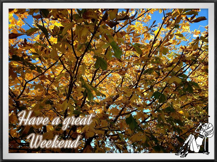 Have a colorfull weekend :kr