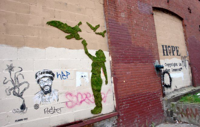 13 Incredible Examples of Moss Graffiti and How to Create Your Own - BlazePress