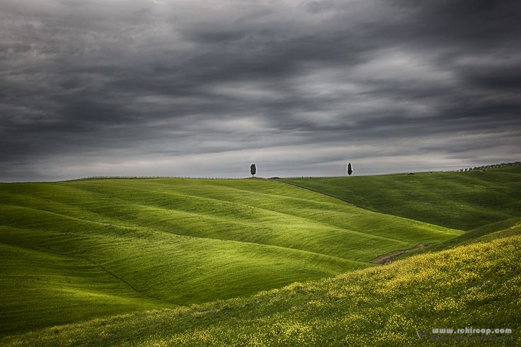 In Tuscany besides having excellent wine and great food, the scenes are also breath taking.  This is one of the many locations in Tuscany with a great landscape which I only had in my dreams before. Fine Art Prints