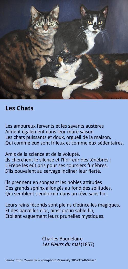 Baudelaire - Les Chats