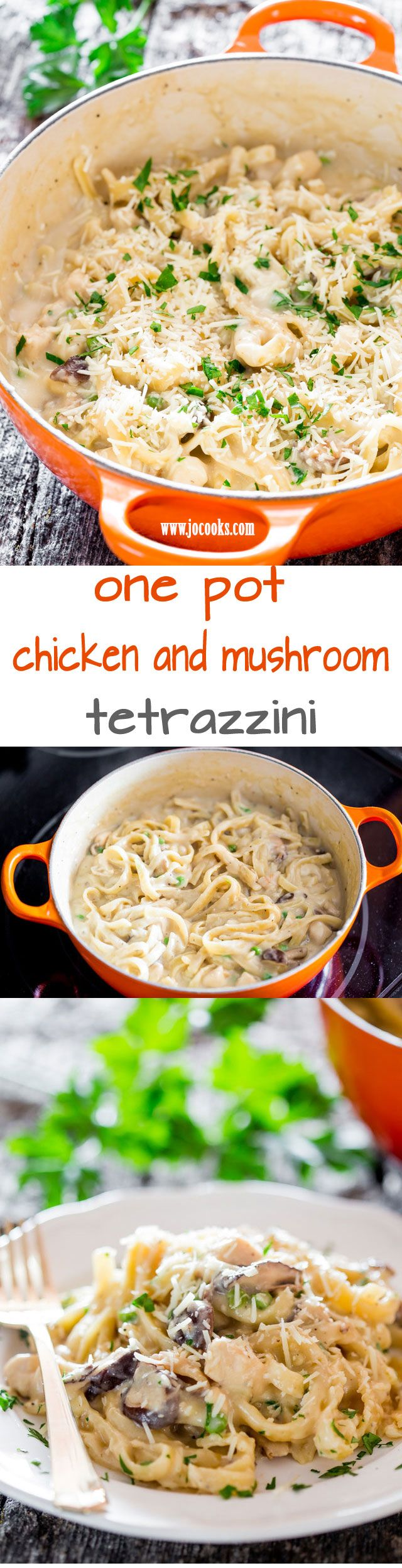 One Pot Chicken and Mushroom Tetrazzini - a simple but creamy, rich and delicious pasta dish with chicken and mushrooms ready in 35 minutes. Perfect for busy weeknights.