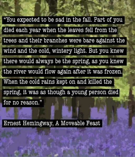 20 best hemingway images on pinterest a moveable feast words from a moveable feast fandeluxe Document