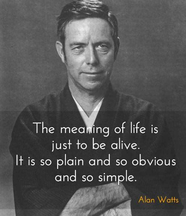 The meaning of life is just to be alive. It is so plain and so obvious and so simple. And yet, everybody rushes around in a great panic as if it were necessary to achieve something beyond themselves. - Alan Watts. British philosopher and writer, best known as an interpreter and populariser of Eastern philosophy for a Western audience