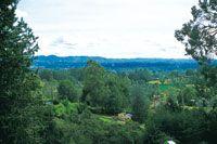 Sector de Llanogrande en el altiplano de Rionegro.