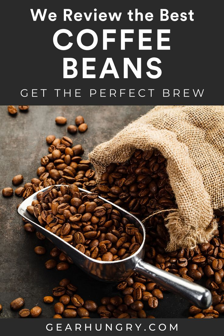 11 Best Coffee Beans In 2020 Buying Guide Gear Hungry In 2020 Best Coffee Coffee Beans Beans
