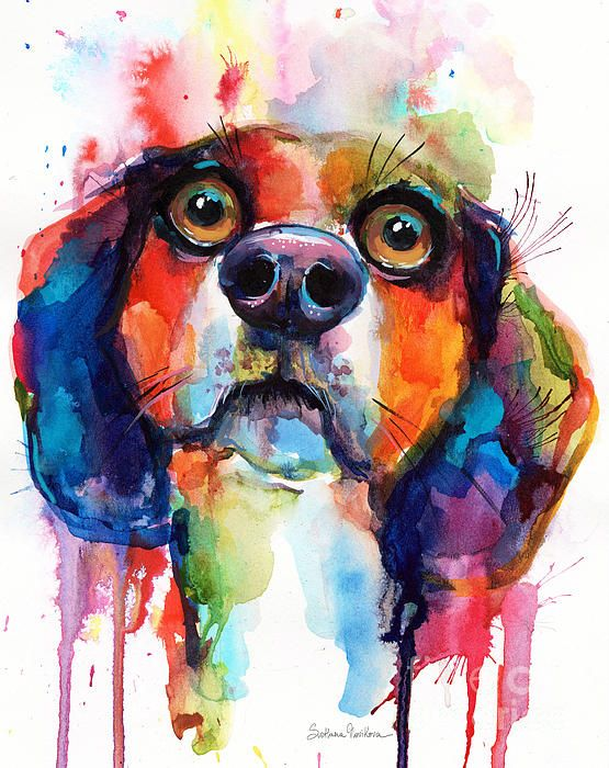 Colorful funny Beagle portrait in watercolor by Svetlana Novikova (all rights reserved).  This picture will make a great gift for any Beagle lover.  It comes on archival paper, gallery wrapped canvas, metal, pillows, and much more.  Original is currently available, and I accept custom pet portrait commissions from your favorite photo.  Please contact me for more information.  www.SvetlanaNovikova.com