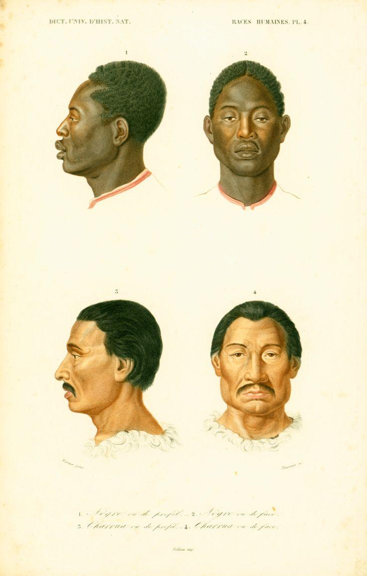 1861 Races Humaines Anatomie Gravure Ch. d' Orbigny Original Ethnologie Anthropologie Sciences 19eme siècle de la boutique sofrenchvintage sur Etsy