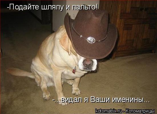Подайте шляпу и пальто я ваши именины