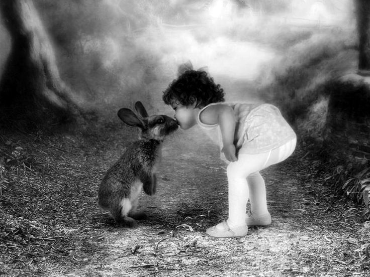 there is nothing more innocent and beautiful than animal and children