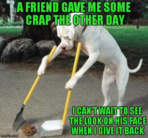 The world we live in is just a revolving door of crap sometimes. | A FRIEND GAVE ME SOME CRAP THE OTHER DAY I CAN'T WAIT TO SEE THE LOOK ON HIS FACE WHEN I GIVE IT BACK | image tagged in dog scooping poop,memes,funny dogs,animals,funny,dog | made w/ Imgflip meme maker
