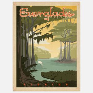 Everglades National Park 18x24, $29, now featured on Fab.