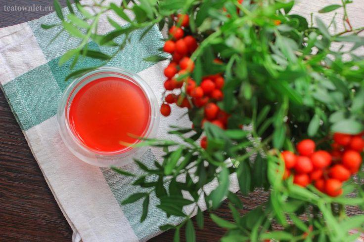 Чай с рябиной  #Рябина #Чайсрябиной #Чай #ЧайныйГородок